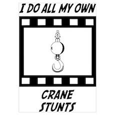 Crane Stunts Poster
