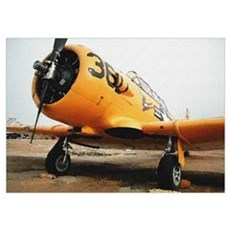 Texan Airplane Poster