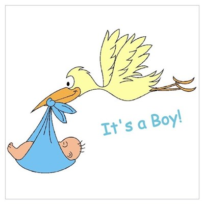 Baby Stork It's a Boy Announcement Poster