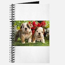 Posing Journal