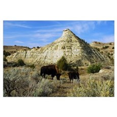 ND BADLANDS 0275 Canvas Art
