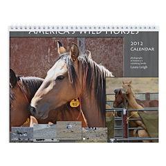 America's Wild Horses Wall Calendar