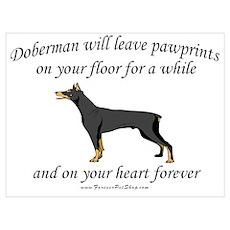 Doberman Pawprints Poster