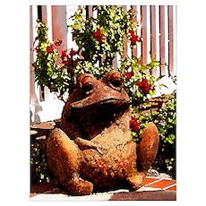 Bermuda Frog Poster