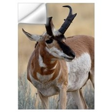 Pronghorn Wall Decal