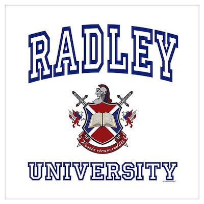 RADLEY University Poster