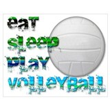 Volleyball girl Posters