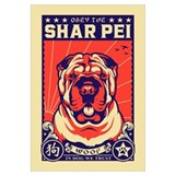 Shar pei Framed Prints