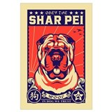 Shar pei Posters