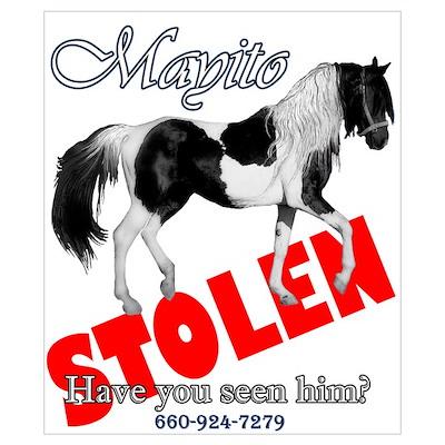 Stolen Horses Poster