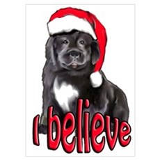 Christmas Newf puppy Poster