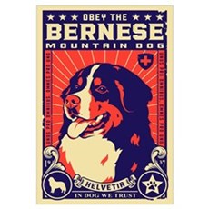 Obey the Bernese Mountain Dog! Framed Print