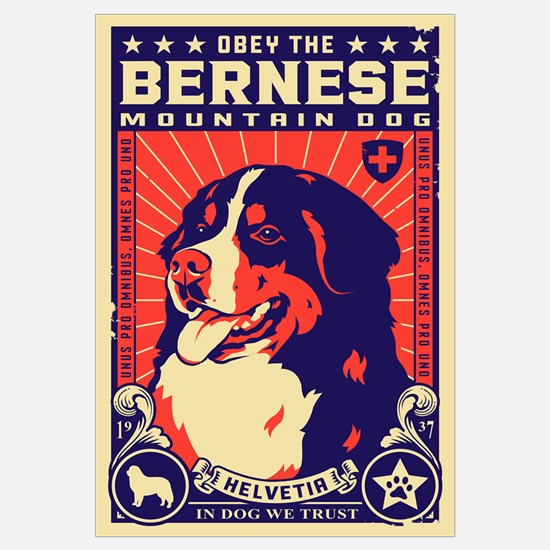 Obey the Bernese Mountain Dog!