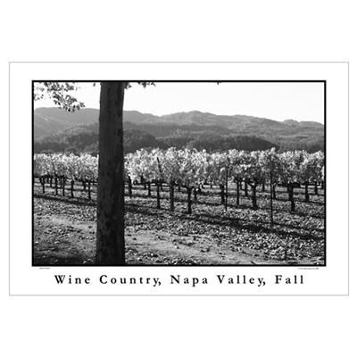 black + white wine country napa valley s Canvas Art