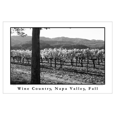 black + white wine country napa valley s Poster