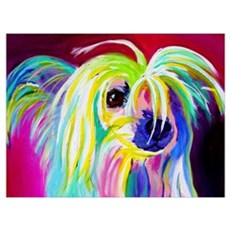 Chinese Crested #2 Canvas Art
