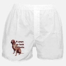 pathetic redbone coonhound Boxer Shorts