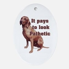 pathetic redbone coonhound Oval Ornament