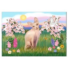 Spring Blossoms & Sphynx Cat Canvas Art