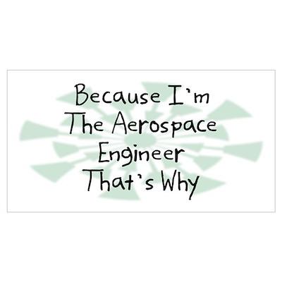 Because Aerospace Engineer Poster