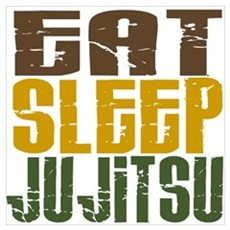 Eat Sleep Ju Jitsu Canvas Art
