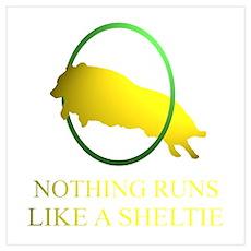 Running Sheltie Poster
