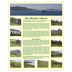 "Blasket Houses 16""x20"" Poster"