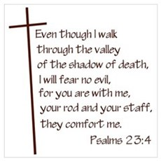 Psalms 23:4 Framed Print