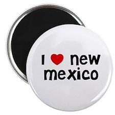 I * New Mexico Magnet