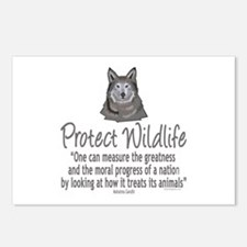 Protect Wolves Postcards (Package of 8)
