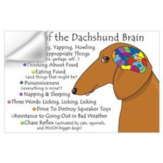 Dachshund Brain Atlas Wall Decal