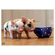 Cute Little pig farm Wall Art