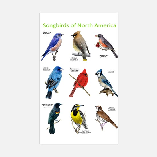 Songbirds of North America Sticker (Rectangle)