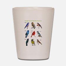 Songbirds of North America Shot Glass