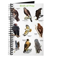 Northern American Birds of Prey Journal
