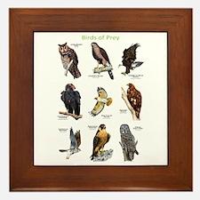 Northern American Birds of Prey Framed Tile