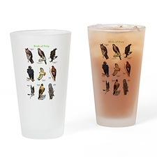 Northern American Birds of Prey Drinking Glass