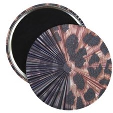 Leopard Print Mix Magnet