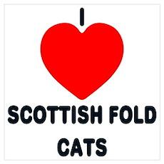 I love Scottish Fold Cats Poster