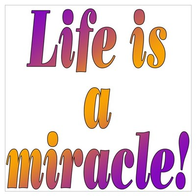 Life Is A Miracle Framed Print