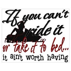 If You Can't Ride It... snowmobiling Poster