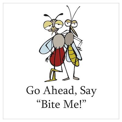 Mosquito Bite Me Poster