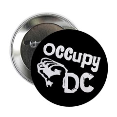 Occupy DC 2.25