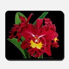 Orchid Oil on Canvas Mousepad