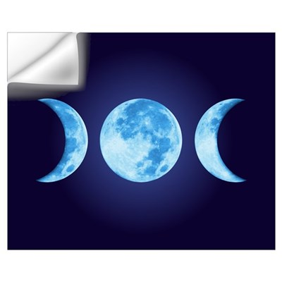 Three Phase Moon Wall Decal