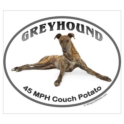 GVV Greyhound Couch Potato Canvas Art