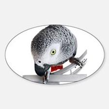 African Grey Parrot Sticker (Oval)