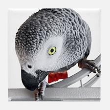 African Grey Parrot Tile Coaster
