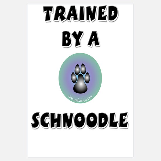 Trained by a Schnoodle