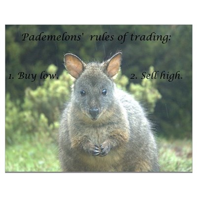Pademelons' 2 rules of trading Poster